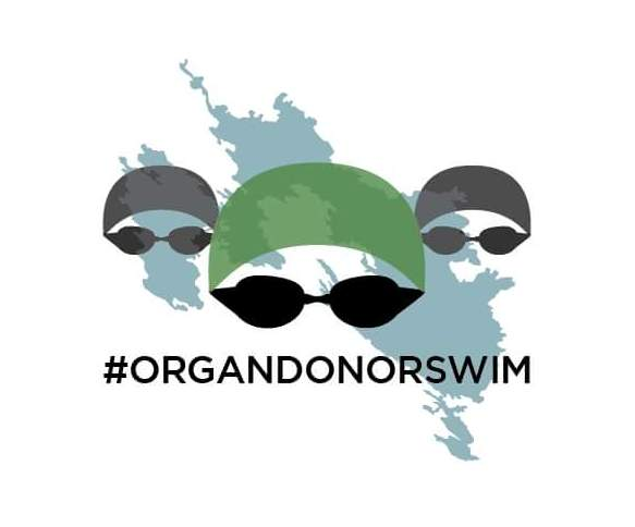 Organ Donor Swim1