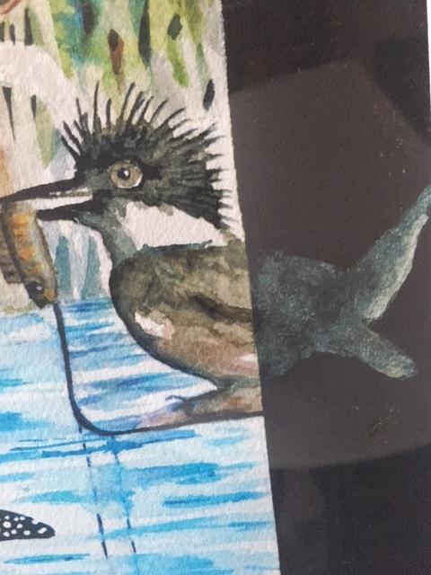 Birds study 17