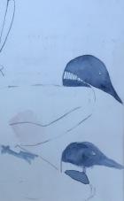 birds study 5